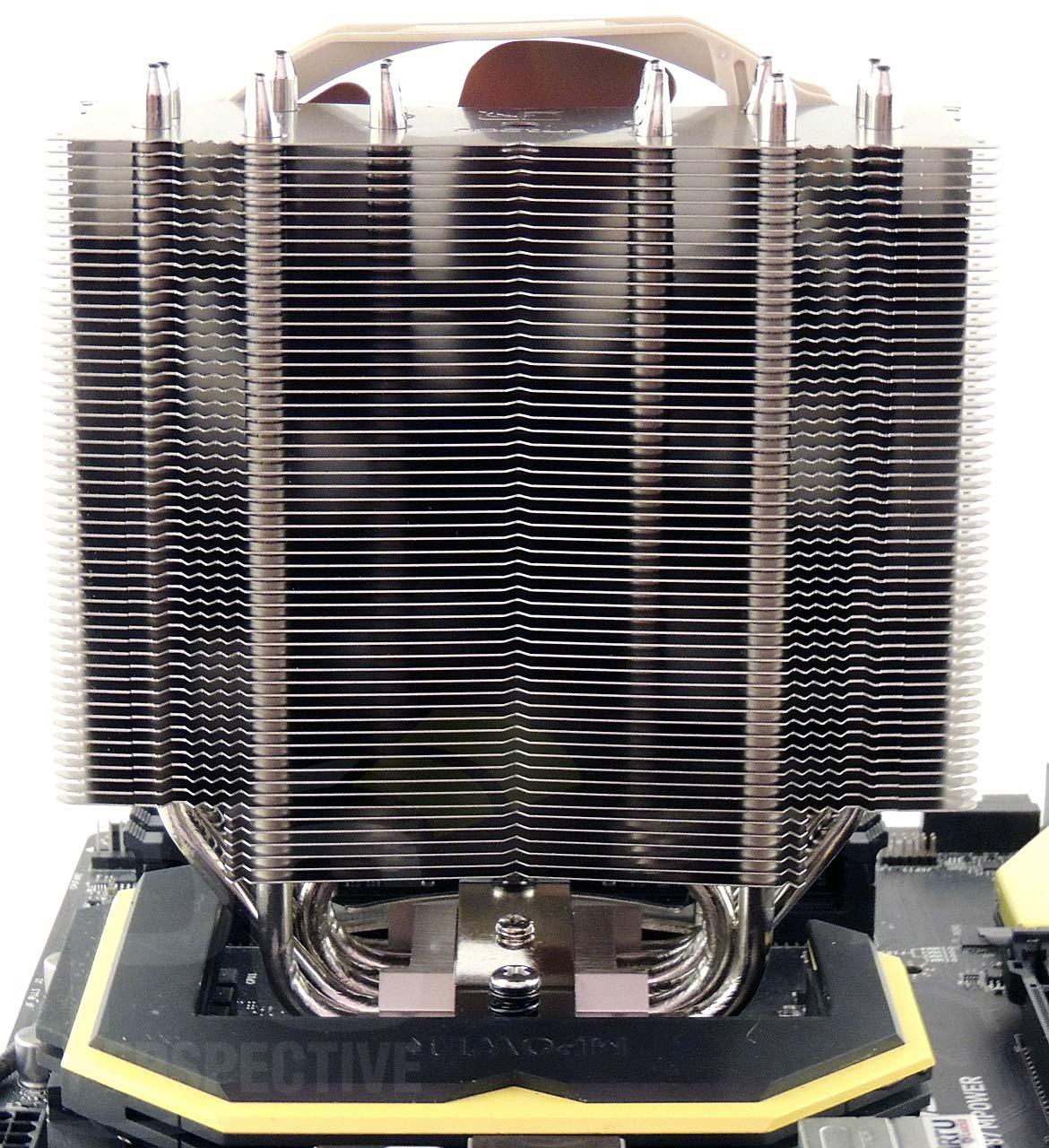 17-board-cooler-back.jpg