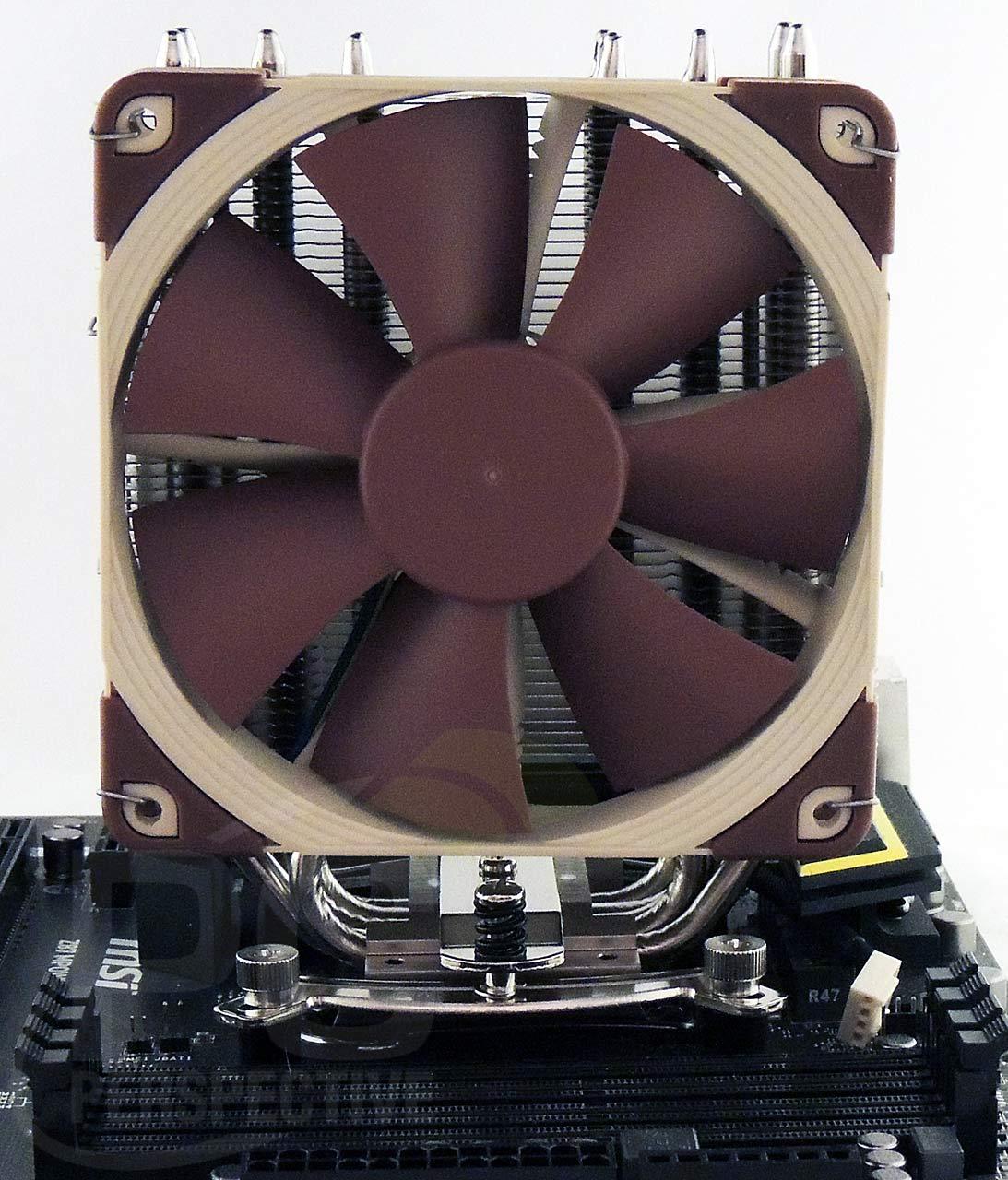 11-board-cooler-front-noram.jpg