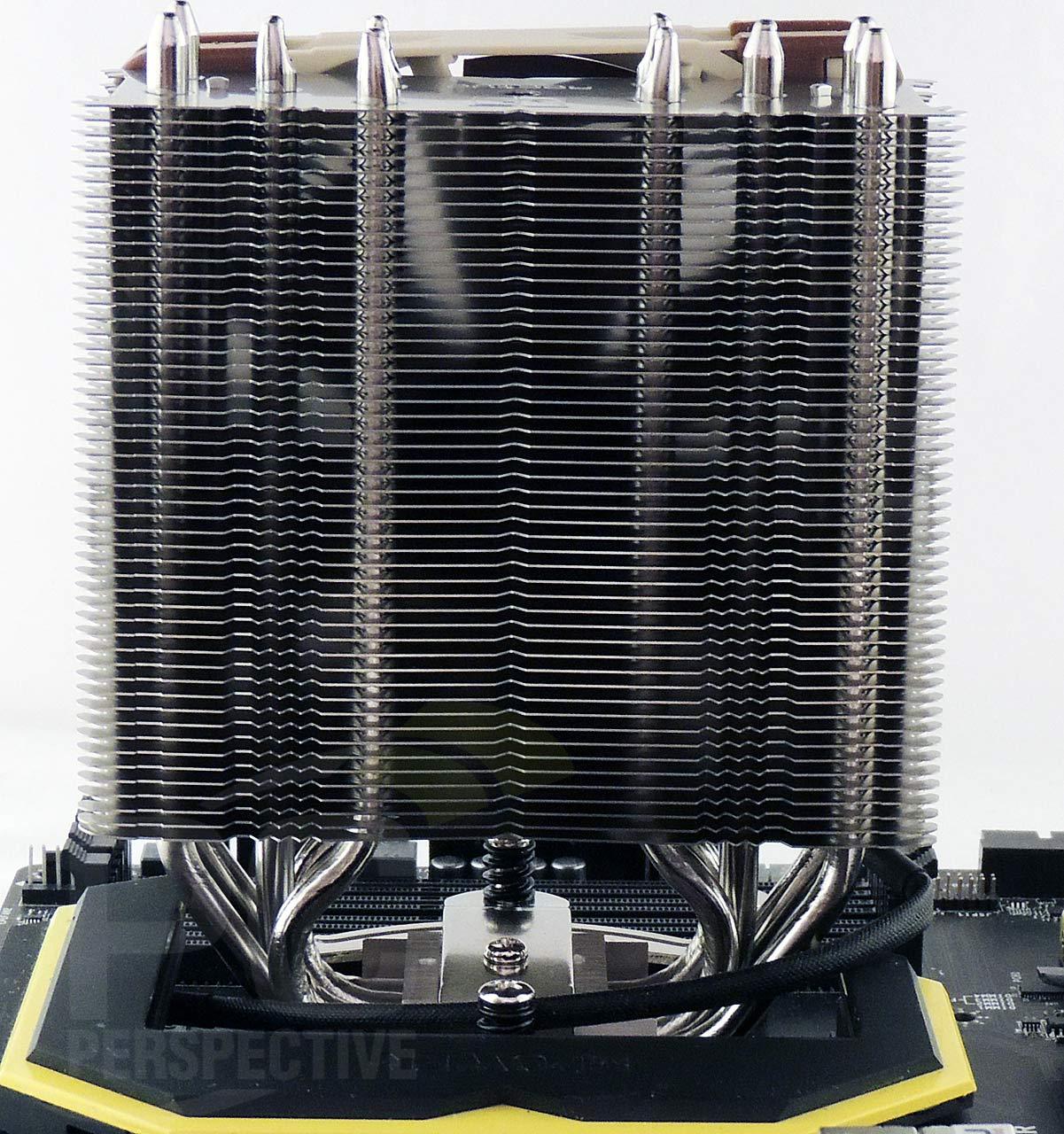 14-board-cooler-back.jpg