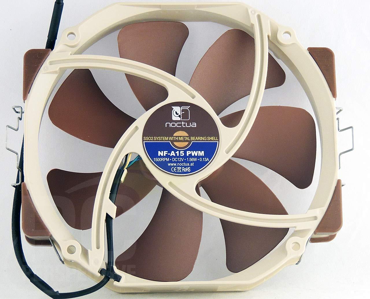 018-fan-bottom.jpg