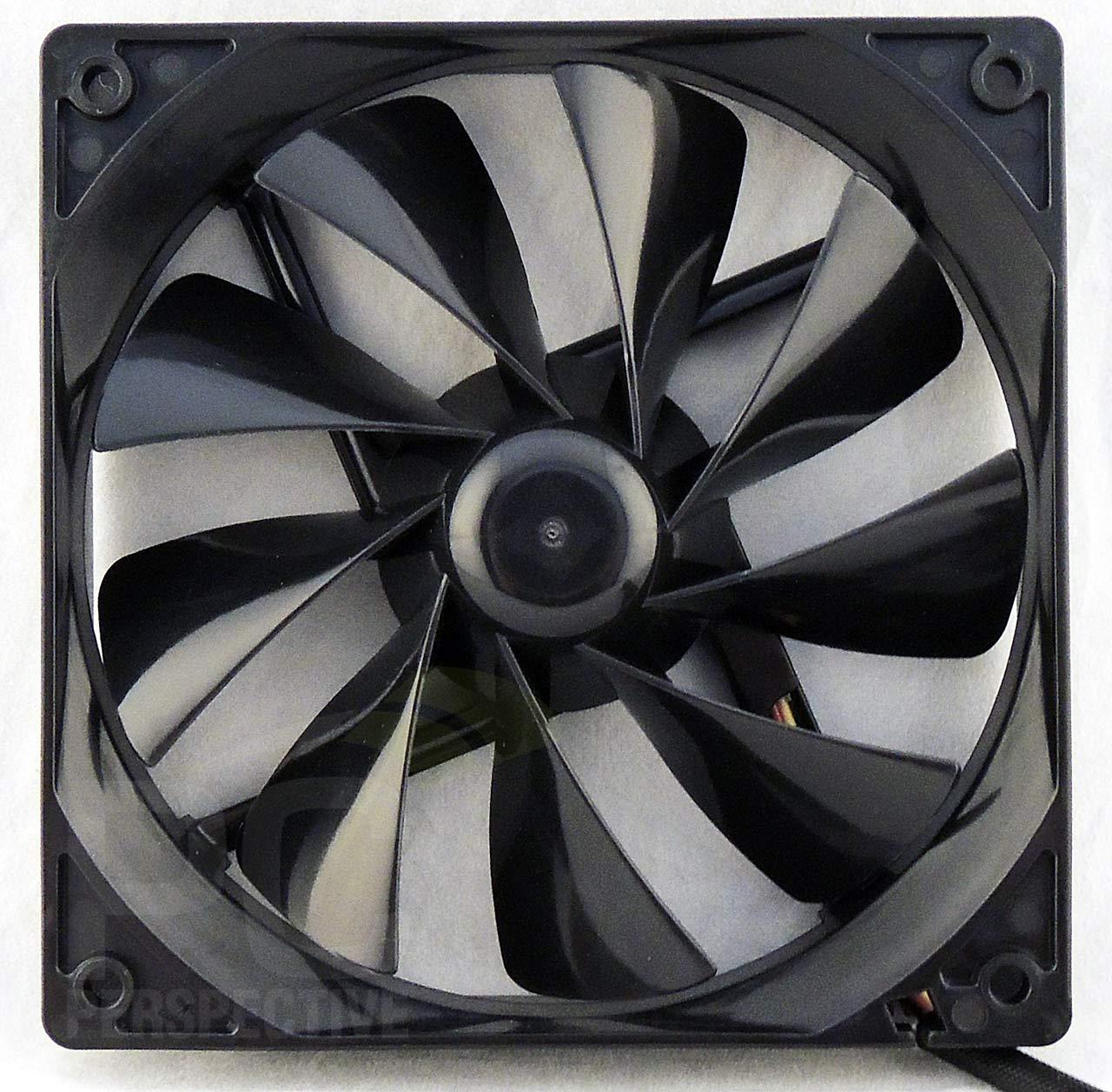 b2-fan-rear-front.jpg