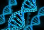 Boolean Computation On DNA ... Sort Of