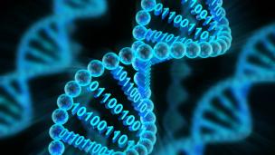 Boolean Computation On DNA … Sort Of